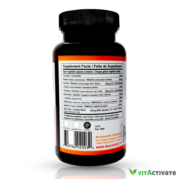 Fatty Liver Protector Supplement - Herbal Ingredients - REAL NATURAL HOUSE - Vita Activate