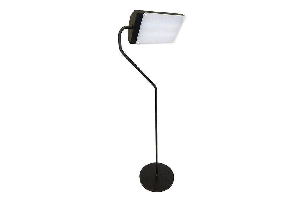SAD Light Floor Lamp - FLAMINGO - Vita Activate