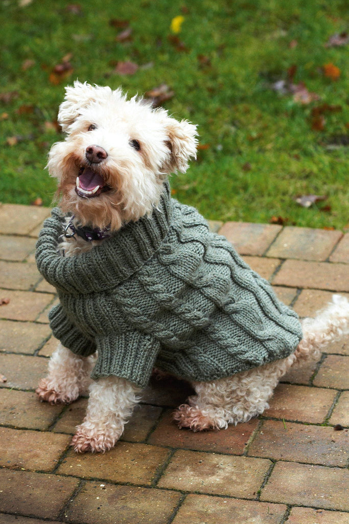 Knitted cable jumper for dogs with chunky roll-neck