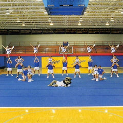 Pro X Cheerleading Mats - SSI Direct