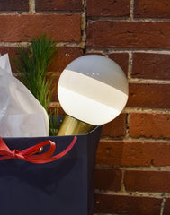Portable dipping lamp in Christmas gift bag