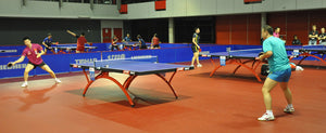 Table Tennis: The Top 5 Men's Table Tennis Players in the World