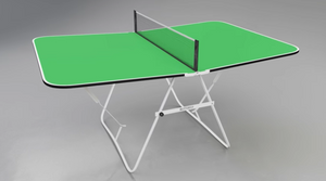 Butterfly Family Mini Table Tennis Table