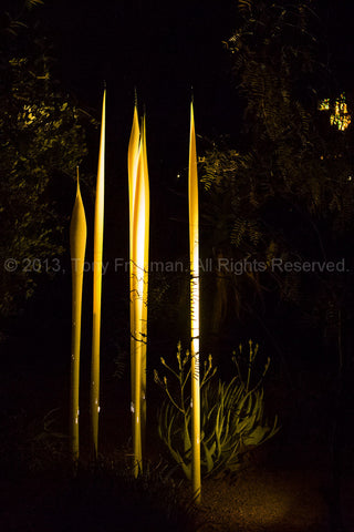 Chihuli Glass at Night in Arizona
