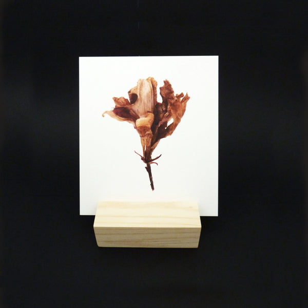 THESE THREE THINGS WOOD BLOCK + PRINT SET