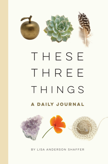 These Three Things book by Lisa Anderson Shaffer