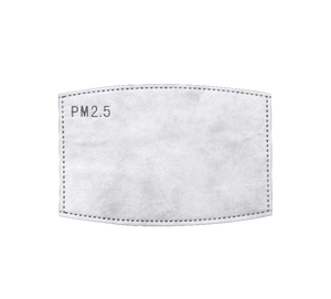 PM2.5 Insert for Face Masks