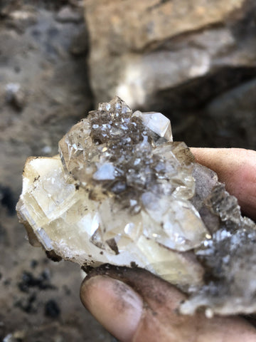 Drusy Cluster in Calcite | Of Coins & Crystals