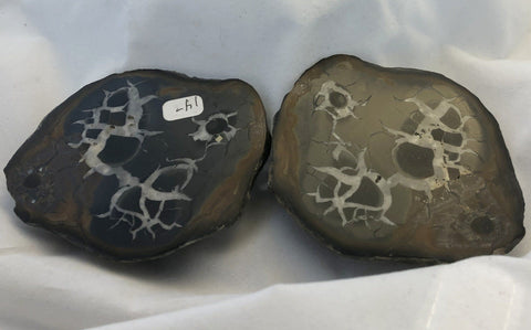 Black Septarian - Morroco - Of Coins & Crystals