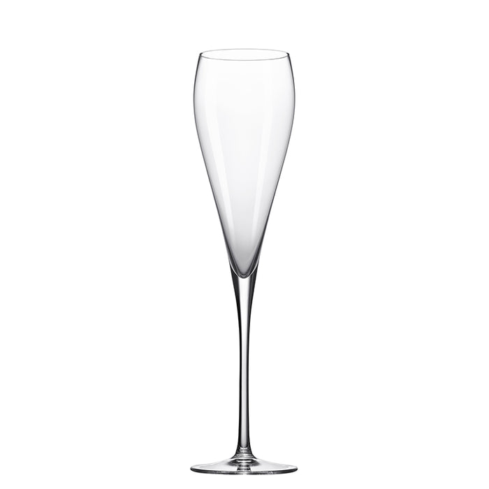 Grace Champagne Glass 9 ½ oz.