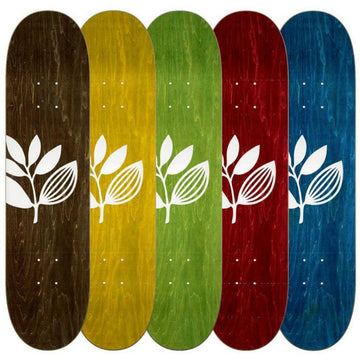 MAGENTA DECK - BIG PLANT *ASSORTED COLOURS* (7.75