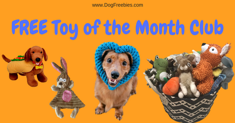 free toy of the month club