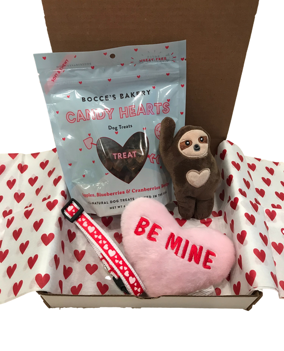 Special Edition Valentine's Day Treat Box