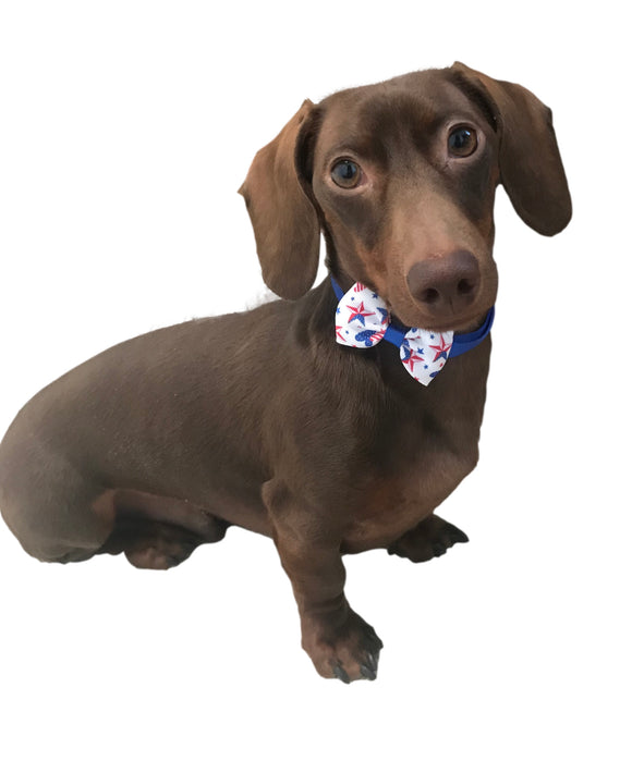Summer Holiday Bow Tie