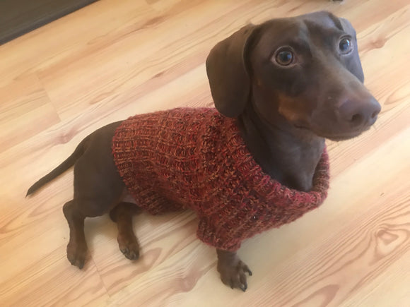 Custom Made Hand Knit Dog Sweater from Tahoe Knits