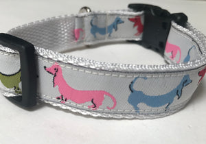 Multi Color Dachshunds Collar