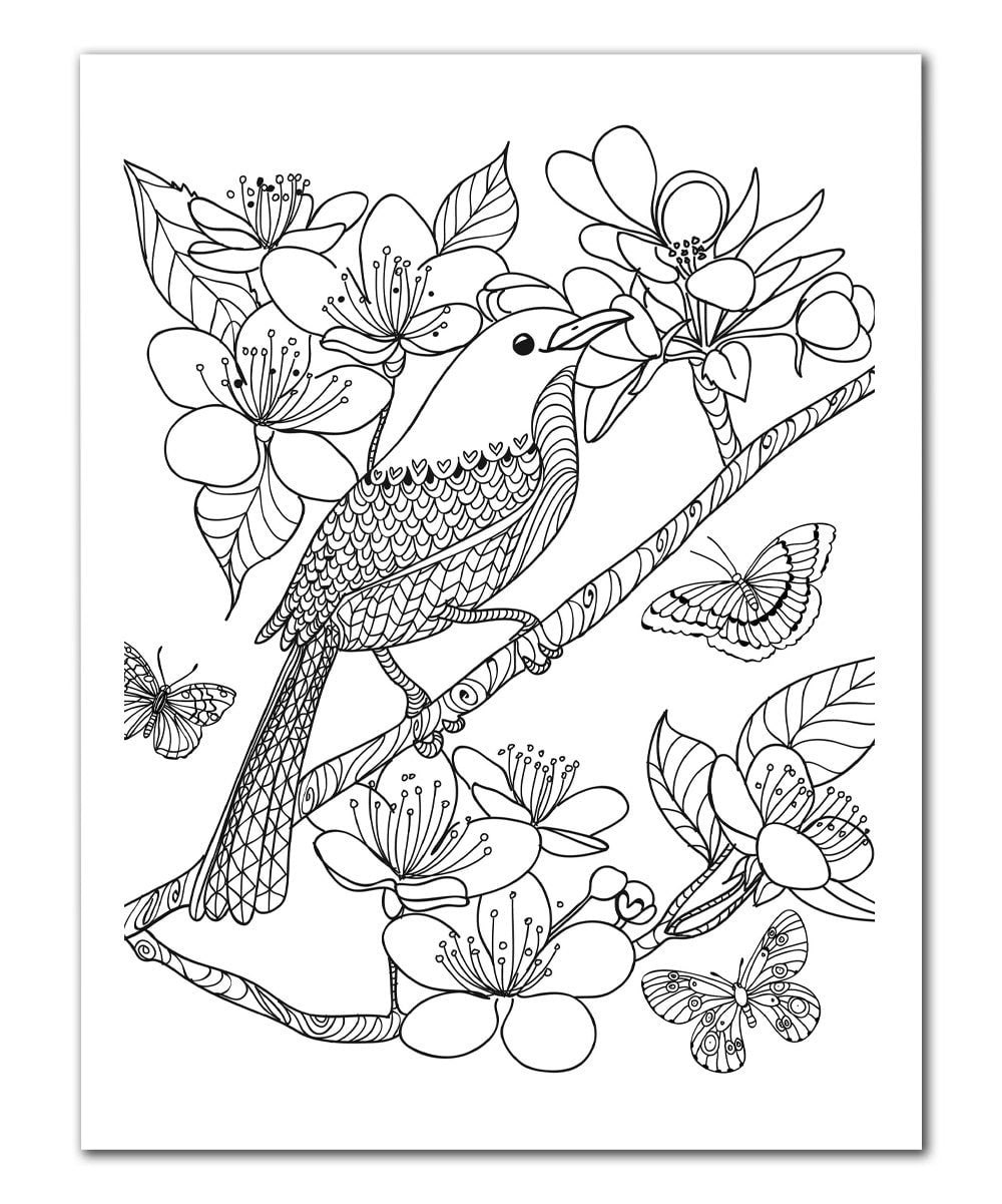 Art Zone Coloring Book : The Art of Mindfulness: Serene and Tranquil Coloring Coloring Book Zone