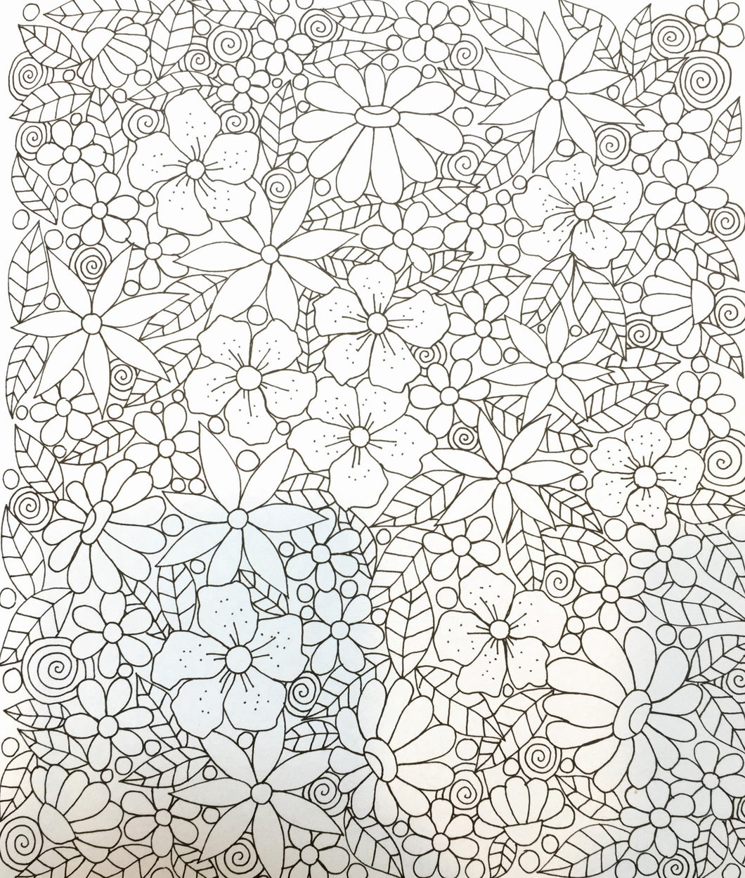Zendoodle coloring enchanting gardens -  Enchanting Gardens Captivating Florals To Color And Display Coloring Book Zone