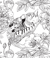 Positively Zen:  A Multi-Level Creative Coloring Book - Coloring Book Zone