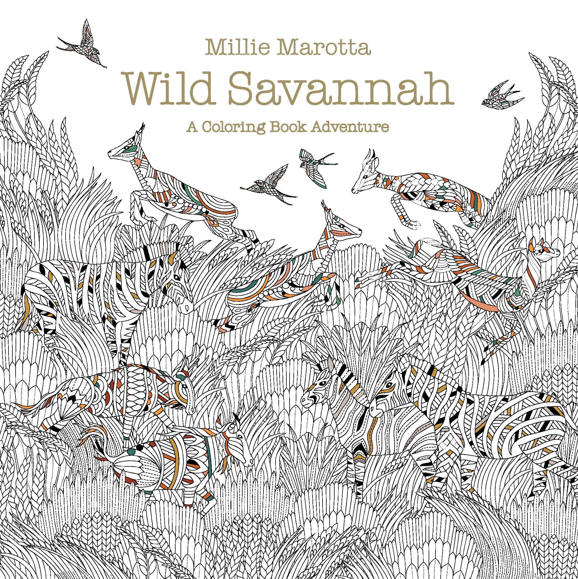 Wild Savannah A Coloring Book Adventure