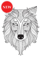 Color Away Your Stress - Live Your Life in Color Series - Coloring Book Zone