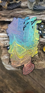 Rainbow Cityhead pin