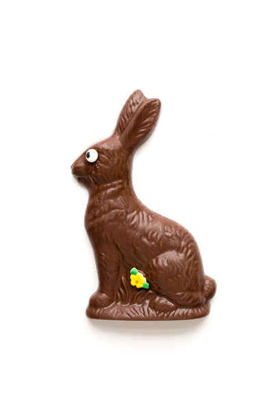 Milk Chocolate Half-Pound Premium Chocolate Easter Bunny
