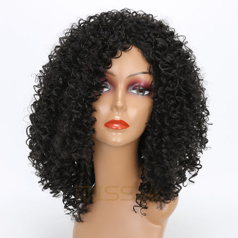 MISS WIG long Kinky Curly Wigs Black Mixed Brown Blonde Afro Wig Short Wigs for Black Women High Temperature Fiber