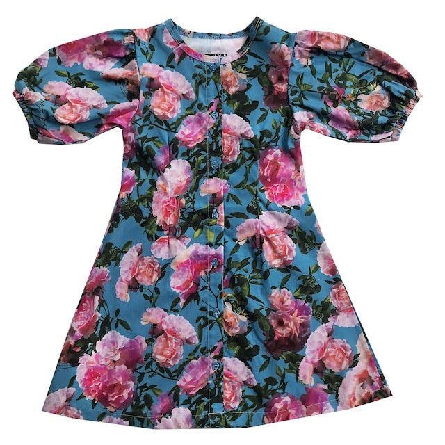 "ROMEY LOVES LULU - ""Blue Flowers"" Puff Sleeve Dress"