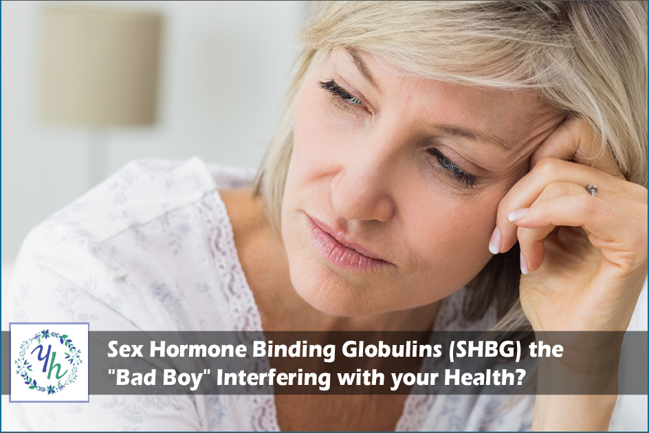 "Sex Hormone Binding Globulins (SHBG) the ""Bad Boy"" Interfering with your Health?"