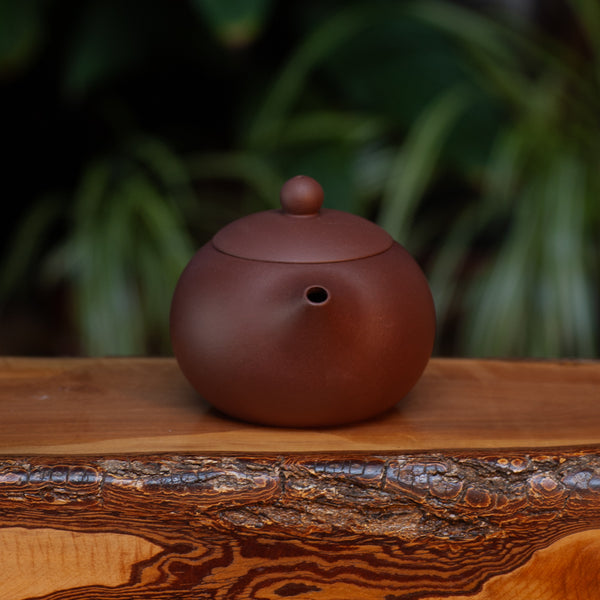 Purple Xishi Yixing pot