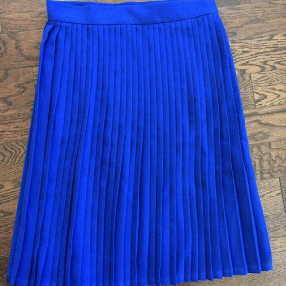 American Apparel Accordion Pleat Skirt-SALE!!!