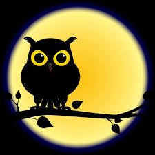 Are You A Night Owl With Sleep Apnea? It May Be A Gene Mutation.