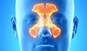 WHY SINUSES GO WRONG AT NIGHT - THE MYSTERY EXPLAINED.