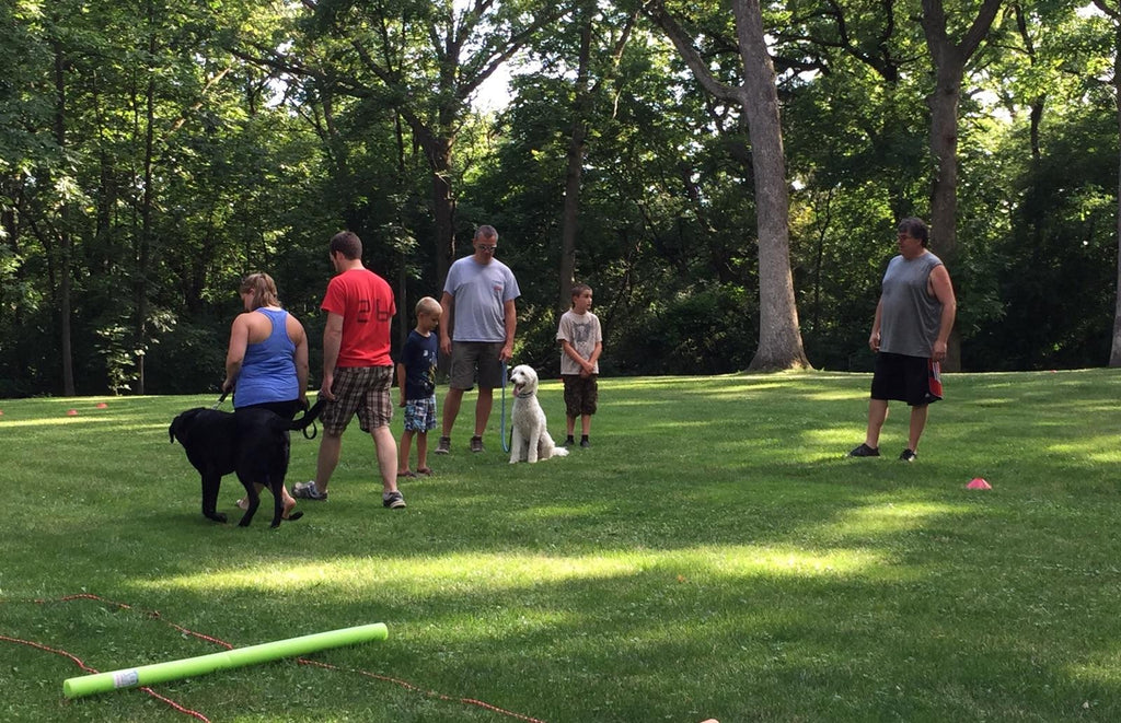 Dog Obedience for Families - Summer 2020