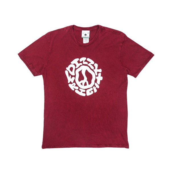 LRG Do The Wright Thing Tee in Red
