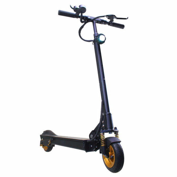 Patgear E5 Foldable Electric Scooter Gold Edition Walk Bye