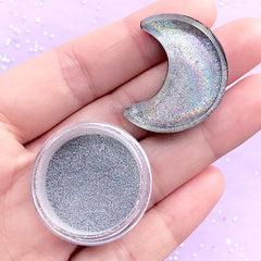 Silver Holographic Powder | Hologram Pigment Powder | Rainbow Glitter Dust | Resin Coloring | Nail Designs (1 gram)