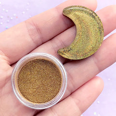 Gold Holographic Pigment Powder | Hologram Glitter Dust | Rainbow Color | Resin Colouring | Nail Art Supplies (1 gram)