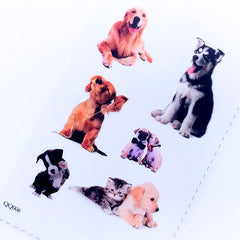 Dog Photo Clear Film Sheet for UV Resin Art | Pet Embellishments | Filling Materials for Resin | Pet Jewelry DIY | Resin Inclusion Supplies