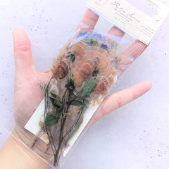 Pressed Flower Stickers | Realistic Floral Embellishment for Herbarium | Resin Inclusions | Scrapbooking Supplies (20 pcs)