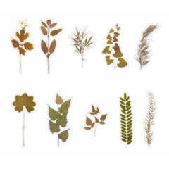 Pressed Leaf Stickers | Realistic Leaves Embellishment for Scrapbook | Herbarium Sticker | Resin Craft Supplies (20 pcs)