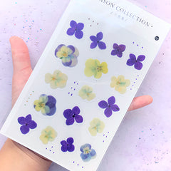 Pressed Violet Pansy Stickers | Realistic Floral Embellishments | Herbarium Supplies | Resin Inclusions | Flower Sticker