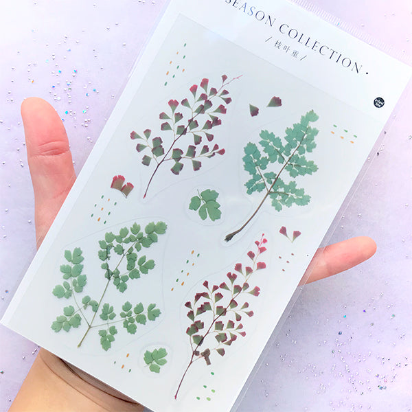 Pressed Leaf Stickers | Realistic Leaves Sticker for Herbarium | Resin Inclusion | Embellishment for Scrapbook