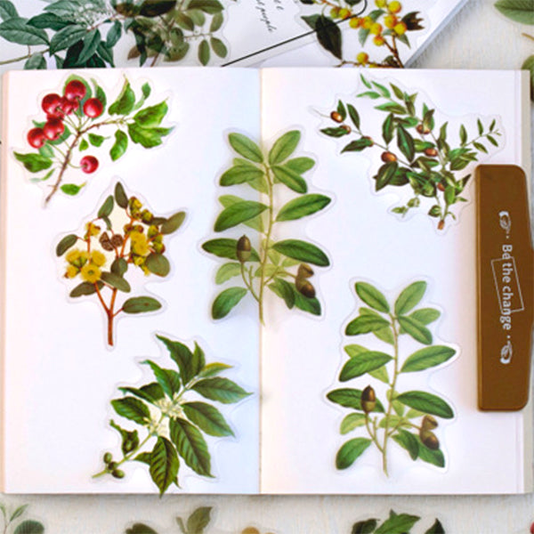 Pressed Leaves with Fruit Stickers | Realistic Leaf Embellishments | Herbarium Supplies | Resin Inclusions | Scrapbook Craft (40 pcs)