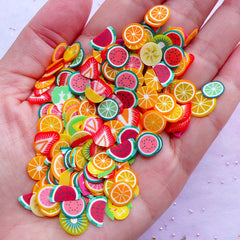Fruit Polymer Clay Slices (Big) | Vegetable Fimo Clay Cane Slices | Miniature Food & Resin Art (100pcs by Random)