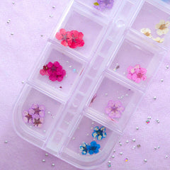 Tiny Dried Flowers | Assorted Mini Flower | Nail Art & Resin Craft Supplies (1 Box of 12 Colors)