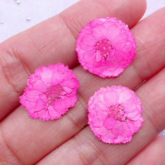 Magenta Dried Flowers | Tiny Pressed Flower | Resin Cabochon Making (3pcs)