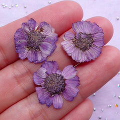 Purple Dried Flowers | Small Pressed Flower | Floral Resin Cabochon DIY (3pcs)