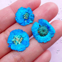 Teal Dried Flowers | Blue Green Mini Pressed Flower | Resin Floral Cabochon DIY (3pcs)